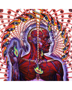 tool lateralus cd