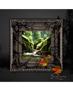 isiulusions i follow the flow cd