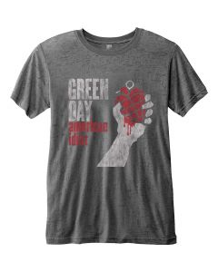 GREEN DAY - American Idiot Vintage / T-Shirt