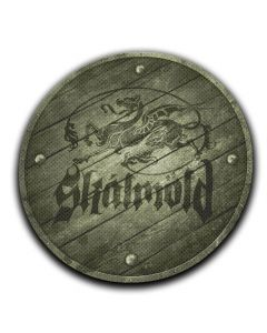 29299 skalmöld dragon shield patch