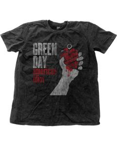 GREEN DAY - American Idiot Vintage Snow Wash / T-Shirt