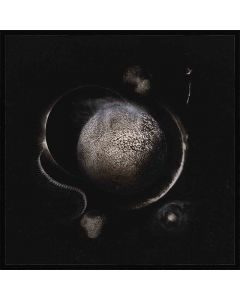 enthroned cold black suns jewel case cd