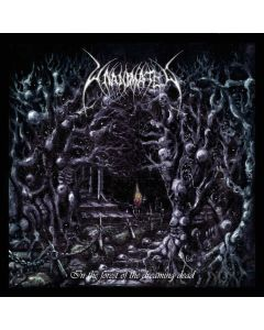 In The Forest Of The Dreaming Dead - SCHWARZES 2-Vinyl