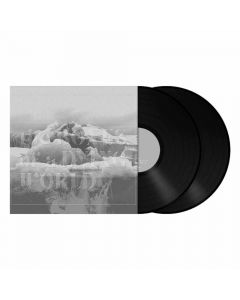 The Bones Of A Dying World - SCHWARZES 2-Vinyl