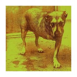 23480 alice in chains alice in chains cd grunge