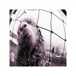 23503 pearl jam vs. expanded edition grunge