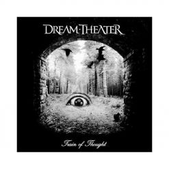 41221 dream theater train of thought cd prog metal