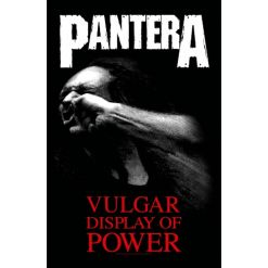 pantera vulgar display of power flagge