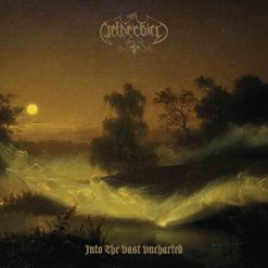 netherbird into the vast uncharted cd