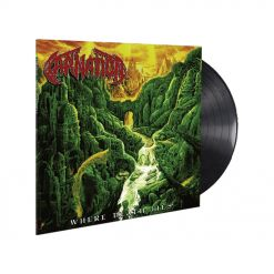 carnation where death lies black vinyl