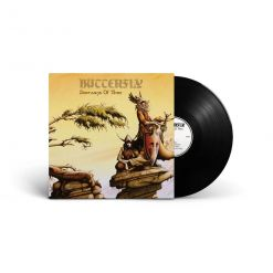 butterfly doorways of time black vinyl