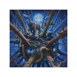 42593 greenleaf rise above the meadow cd rock